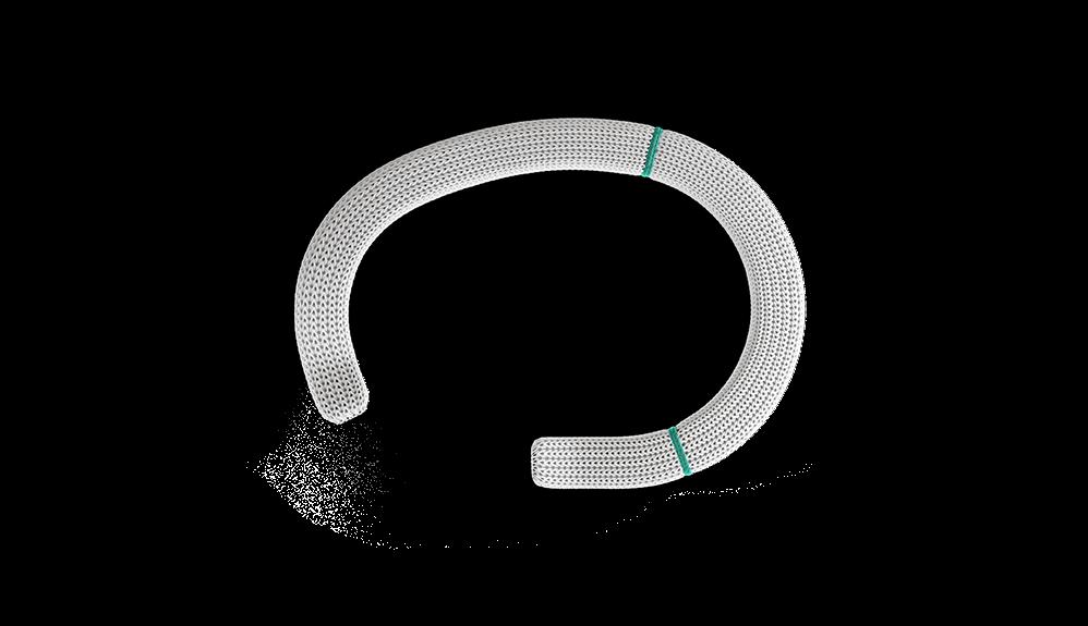 Abertura do Segmento Septal do Anel de Anuloplastia Tricúspide Physio
