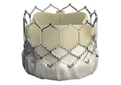 Edwards SAPIEN3 Transkatheter-Herzklappe