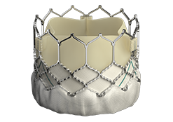 Edwards SAPIEN 3 transcatheter heart valve