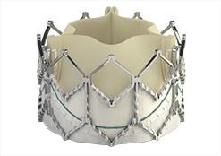SAPIEN XT transcatheter heart valve