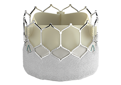 SAPIEN 3 Ultra transcatheter heart valve