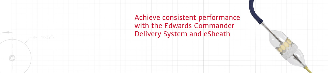 Achieve consistent performance with the Edwards Commander Delivery System and eSheath