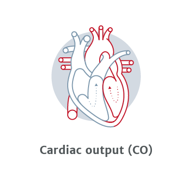 Cardiac Output (CO)
