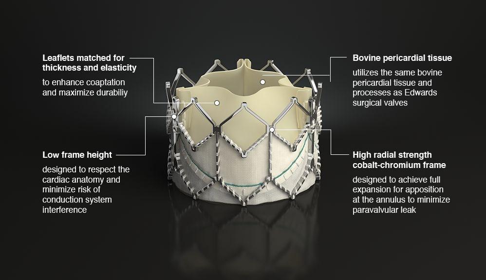 Edwards SAPIEN XT valve features