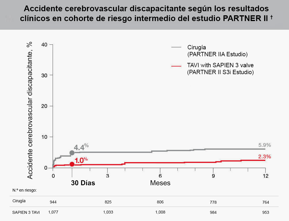 Accidente cerebrovascular incapacitante